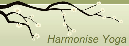 Harmonise Yoga promotes well being and happiness, harmonising breath, body and mind.